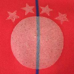 Endlich: Der FC Bayern zeigt (Regenbogen-) Flagge.